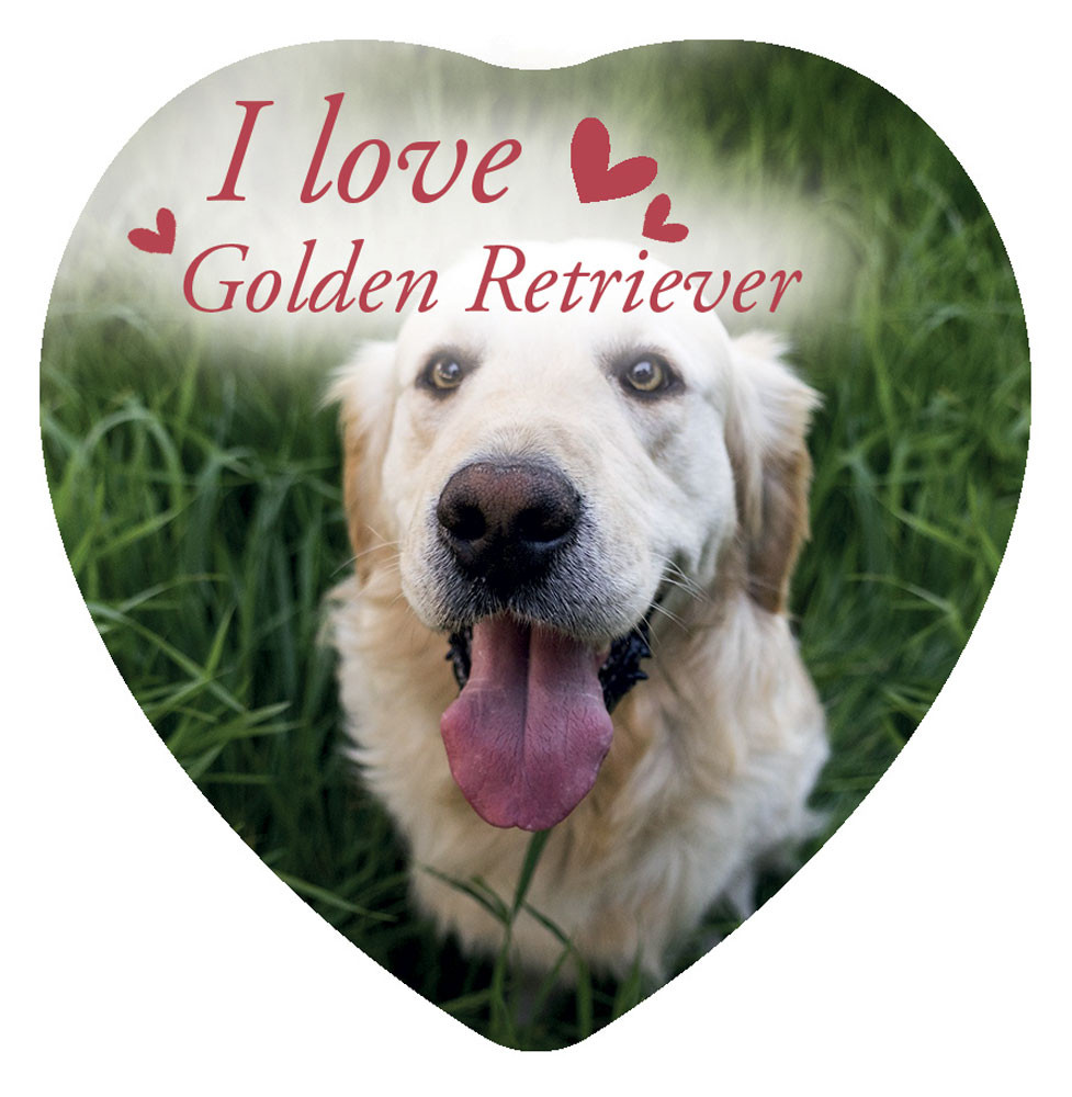Magnete Love Golden Retriver