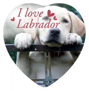 Magnete Love Labrador